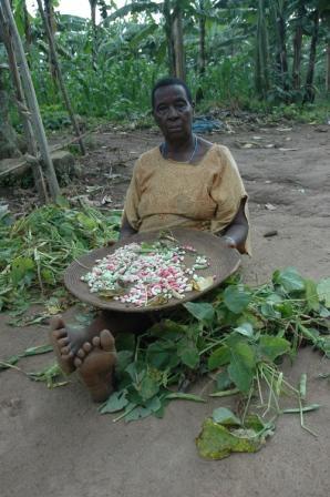 geld verdienen in afrika