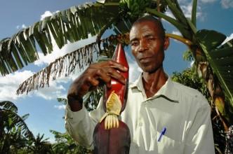 Biologisch boeren in Uganda