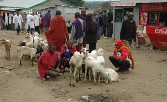 Keekonyoikie Slaughterhouse bij Nairobi