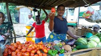 Een slechte kwaliteit zaaizaad is funest voor de landbouw en de voedselvoorziening in Afrika, vindt Afrisem0