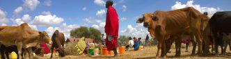 In Tanzania kunnen kleinschalige boeren uitstekend de lokale vraag naar melk invullen.